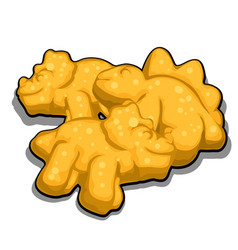 Cookies in the shape of dinosaurs isolated vector