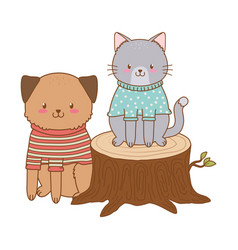cute cat with dog in trunk woodland character vector image