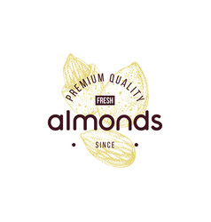 Emblem with type design and hand drawn almonds vector