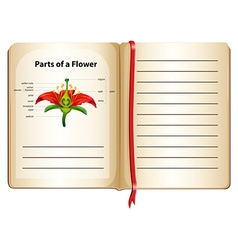 Parts of flower on a book vector