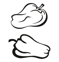 Pepper black pictogram vector