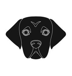 The dog breed is a labradormuzzle labrador vector