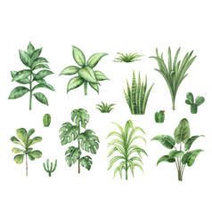 Watercolor set with home plants isolated on vector