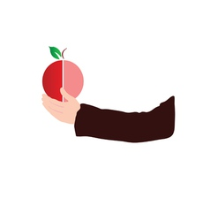 fruit in hand color vector image