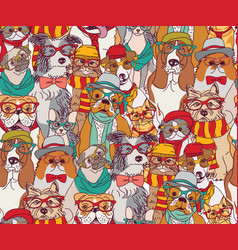 fashion cats and dogs in glasses color seamless vector image