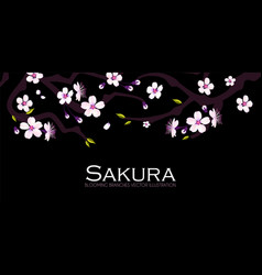 Cherry blossom blooming sakura branches vector