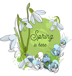 design banner with spring is here vector image
