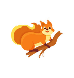 Funny red squirrel sitting on wooden branch small vector