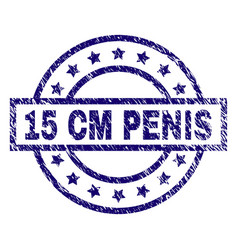 grunge textured 15 cm penis stamp seal vector image