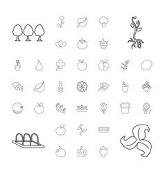 Leaf icons vector