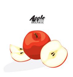 cartoon apple ripe red fruit vegetarian vector image vector image