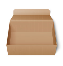 opened cardboard box vector image vector image