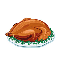 appetizing turkey on a plate vector image