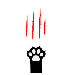black cat paw print leg foot bloody claws vector image