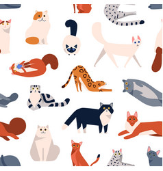 Cat breeds flat seamless pattern british vector