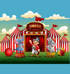 circus show with trainer and two elephants vector image