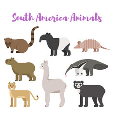 flat style set animals of south america vector image
