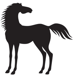 horse stand vector image