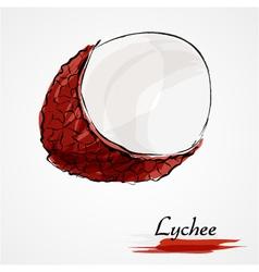 Lychee vector