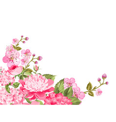 sprng floral background vector image vector image