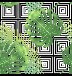 beautiful tropical abstract color and green palm vector image