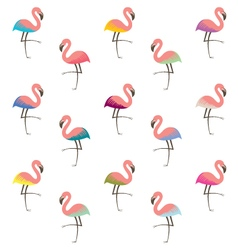 Colorful flamingo pattern vector