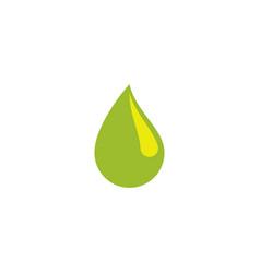 moringa oil vector image