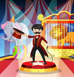 Ring master and animal show vector image