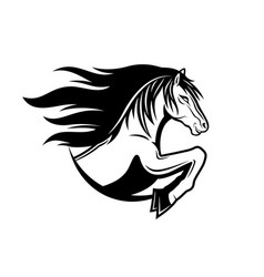 Sign of horse vector