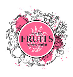 Poster template with hand drawn fruits vector
