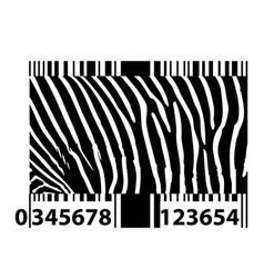 zebra bar code vector image