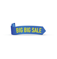 Big big sale sign vector