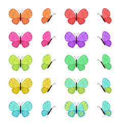 colored butterflies isolated on white background vector image