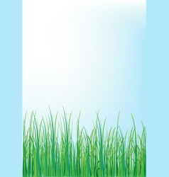 Grass nature flowers vector