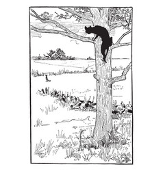 reynard the fox tiberts trick vintage vector image