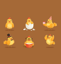 set of animated bachickens in different poses vector image