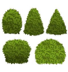 Set of garden bushes for topiary garden scene vector