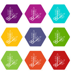 spa eco leafs icons set 9 vector image