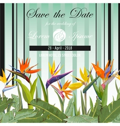 Wedding Card Tropical Flowers Background vector