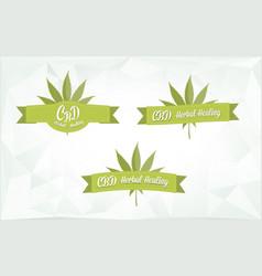 Cbd marijuana herbal healing banner vector
