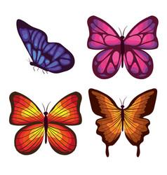 beautiful butterflies flying set vector image