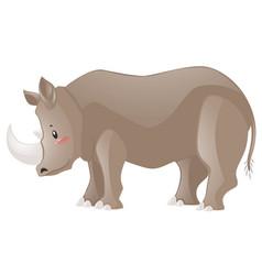 Cute rhino on white background vector