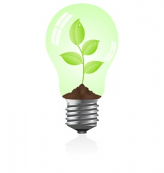 eco light bulb vector image