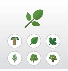 flat icon bio set of oaken foliage decoration vector image