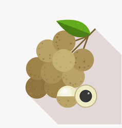 longan icon with long shadow vector image