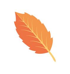 Natural big leave color background vector