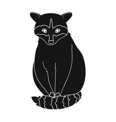 raccoonanimals single icon in black style vector image