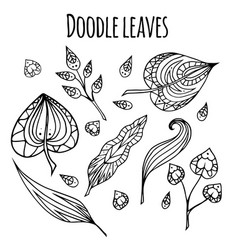 Set of black and white doodle leaves with vector