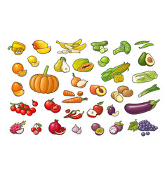 set vegetables and fruits color flat vector image
