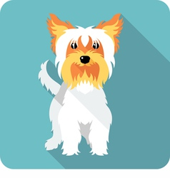 dog Yorkshire terrier standing icon flat design vector image vector image